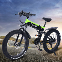 electric bicycle R5