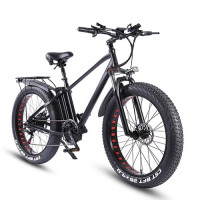 RIDE66 KS26 26 inch Fat Tire 750W electric bicycle 48V 20AH 2 Lithium batteries Mountain Bike