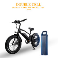 ride66 T20 750W 48V10ah Dual battery electric mountain bike 4.0 fat tire